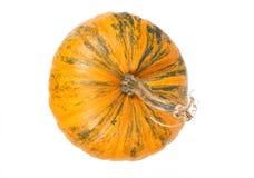 Взгляд сверху свежей оранжевой тыквы Стоковые Фотографии RF
