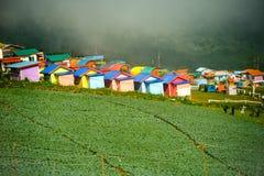 Взгляд сверху фермы капусты и красочного дома домов в деревне среди зеленых деревьев на гористых местностях Стоковая Фотография RF