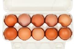Взгляд сверху яичек цыпленка в картонной коробке Стоковые Изображения RF