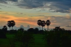 Взгляд сельской местности Стоковое Изображение RF