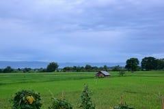 Взгляд сельской местности Стоковые Изображения RF