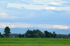 Взгляд сельской местности Стоковые Изображения
