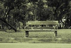 Взгляд скамейки в парке Lumpini, Бангкока Стоковое Изображение