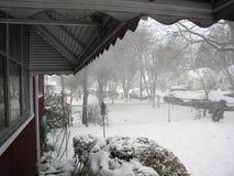 Взгляд снега Стоковое Фото