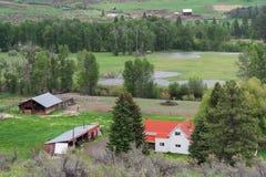 Взгляд со стороны и сельскохозяйственное угодье страны на Вашингтоне США Стоковое фото RF