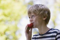 Взгляд со стороны мальчика есть клубнику Outdoors Стоковая Фотография