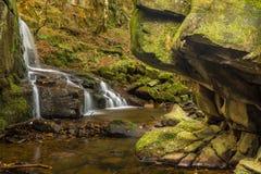 Взгляд со стороны Trickling водопада в окружающей среде полесья Стоковые Изображения RF