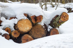 Взгляд стога швырка покрытого снегом стоковое изображение rf