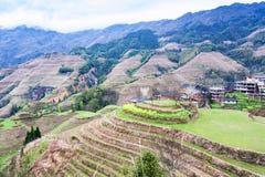 взгляд террасных садов в стране Dazhai Стоковая Фотография RF