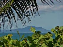 взгляд тропового пляжа сценарный Стоковое Изображение