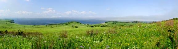 Взгляд луга и моря лета панорамный Стоковое Изображение RF