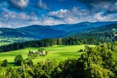 Взгляд лугов и леса горы на заходе солнца Стоковая Фотография