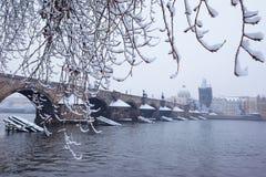 Мост Карла снежка в Праге стоковая фотография rf