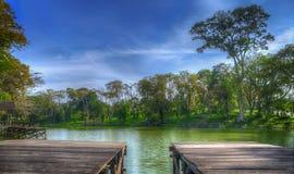 Взгляд утра озером Стоковая Фотография