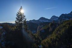 Взгляд утра от Komna Стоковое Изображение