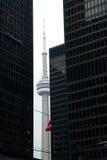 Взгляд улицы, центр города, Торонто, Онтарио, Канада стоковая фотография rf