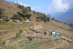 Взгляд холма Poon в Непале Стоковая Фотография
