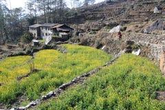 Взгляд холма Poon в Непале Стоковые Изображения RF