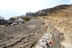 Взгляд холма Poon в Непале Стоковые Фото