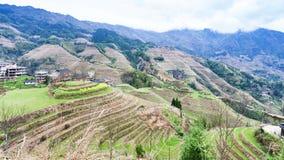 взгляд холмов риса террасных в стране Dazhai Стоковая Фотография RF