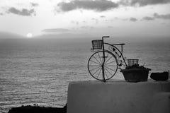 Взгляд цветочного горшка велосипеда Стоковое Фото