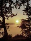 Взгляд через ветви к глубокой туманной долине внутри рассвет Туманное и туманное утро на точке зрения песчаника в национальном па Стоковые Фото