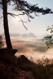 Взгляд через ветви к глубокой туманной долине внутри рассвет Туманное и туманное утро на точке зрения песчаника в национальном па Стоковые Изображения RF