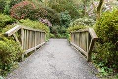 Взгляд через деревянный мост Стоковое фото RF
