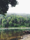 Взгляд через реку Стоковые Фото