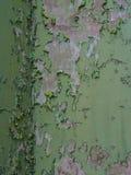 Взгляды вокруг Scharloo - краски шелушения стоковое фото rf