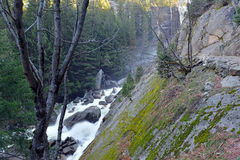 Взгляды вдоль тумана отстают до весеннего падения, Yosemite Стоковая Фотография