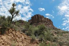 Взгляды каньона реки соли стоковые фотографии rf