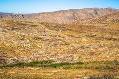 Взгляды на шаге Pakhuis в Южной Африке Стоковая Фотография