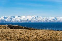 Взгляды свода моря исландские стоковые изображения rf