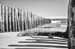 Взгляд дюны Pilat от фретки крышки стоковые изображения