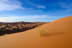 Взгляд дюн Chebbi эрга - пустыня Сахары Стоковое Изображение