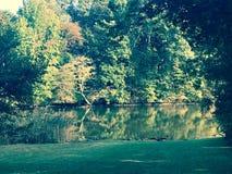 Взгляд Fall River Стоковое Изображение RF