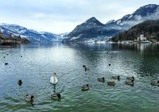 Высокогорный взгляд озера зимы Стоковое фото RF