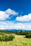 Взгляд Krkonose & x28; Гигант Mountains& x29; Стоковые Изображения RF