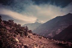 Взгляд Machapuchare на треке базового лагеря Annapurna, Непал стоковые изображения rf