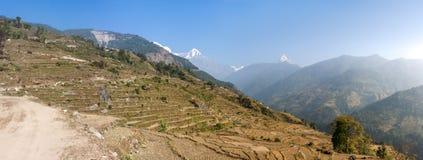 Взгляд Machapuchare на треке базового лагеря Annapurna, Непал Стоковая Фотография