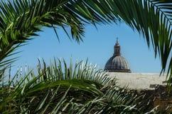 Взгляд na górze католической церкви через ладонь разветвляет Стоковая Фотография RF