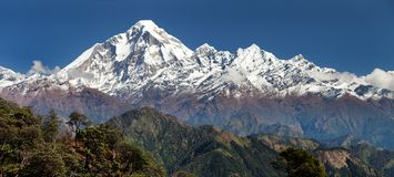 Взгляд Panoramatic от пропуска Jaljala к Dhaulagiri Himal Стоковые Фото