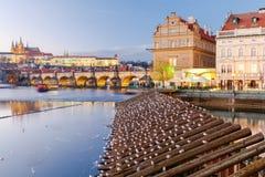 взгляд prague замока взгляд городка республики cesky чехословакского krumlov средневековый старый Стоковое фото RF