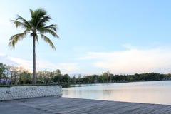 Взгляд ` s стороны озера Стоковое Фото