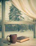 Взгляд Snowy Стоковое Фото