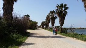 Взгляд walkroad пляжа в Израиле Стоковое Фото