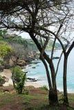 Взморье Бали стоковые фотографии rf
