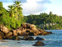Взморье Сейшельских островов с пальмами Стоковое фото RF