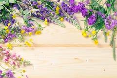Взойдите на борт предпосылки для дизайна в рамке blossoming цветков лета Место для надписи Светлая предпосылка стоковые фотографии rf